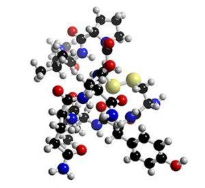 oxytocin-mol
